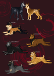 Valhalla's Titan and Golden Wind Pups by ElysianImagery