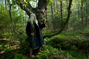 2015-05-04 Wizarding Green 01 by skydancer-stock