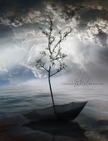 Expanding Hope Capacity by IrondoomDesign