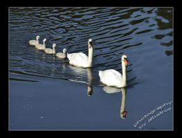 Family outing by albatros1
