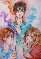 Harry, Ron and Hermione by Miu-chii