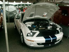 Ford Shelby GT500 by Mister-Lou