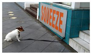 Squeeze me by route64