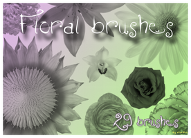 Floral brushes by stardixa