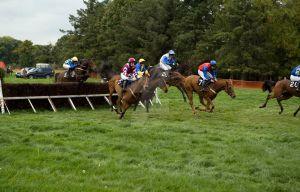 Gurteen point to point race 1 by Cyril-Helnwein