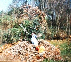Fun in the leaves 1995 by justamom