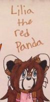 Lilia the red panda by emerswell