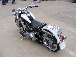 Softail Deluxe View by colts4us