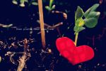 Even plants need some love by Ming-Shuw