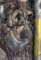 Tree Monster Sandwich by abstractcamera