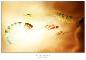 Road To Paradise by repture