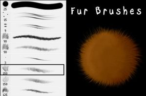 Fur Brushes by Stalcry