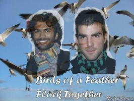 Birds of a Feather by piratingpunk