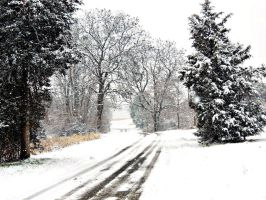 Snowy Backroad by TemariAtaje