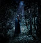 In the Shadow of the Moon by Faraday-of-Skarabost