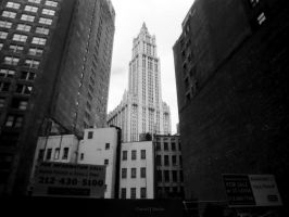 New York City XXIII by DanielJButler