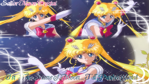 In the name of the Moon I'll punish you 1366x768 by NatouMJSonic