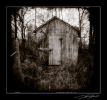 holga shack by electricjonny
