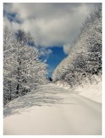 winter 3 by FrantisekSpurny