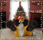 Merry Christmas Paws *Animated* by LightningTheFox7