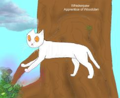 CotC Whiskerpaw by Raptor8073