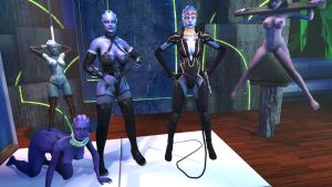 Asari Doms (Censored) by Vitezislav