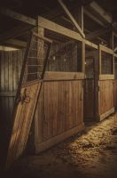 Broken Stables by JaredWingate