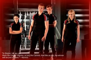 The Career Tributes by I-Clove