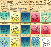 Pokemon-Expressions meme by cluelessAvian