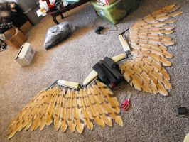 Wing Peek WIP by Zhon