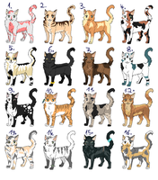 Cat adoptables -open- by Talitah