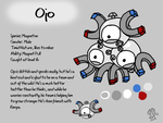 Ojo Reference Sheet by DragonwolfRooke