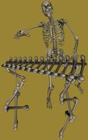 Bone Xylophone by markopolio-stock