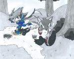 Sonic the Hedgehog Vs Sash Lilac the Water Dragon by Bluexorcist93