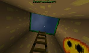 Survivalcraft 2014-11-26 20-55-00 by TheAllMightyPanda14