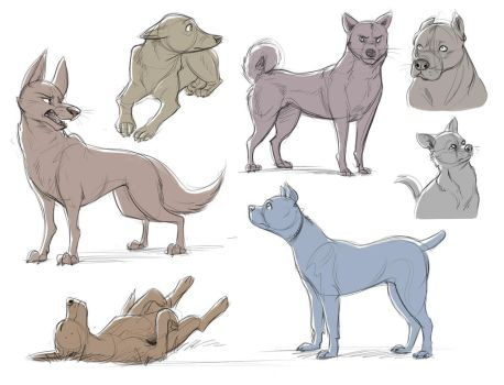 Dog Studies by Temiree