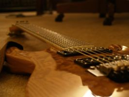 My 7 string (2 of 3) by toyflamethrower1