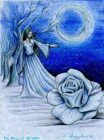 The Rose of Winter I by Dafca-dreams