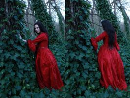 petit chaperon rouge 4 by magikstock