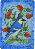 Blue Jay and Berries by black-brd