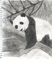 Panda Bear by JunieNicole