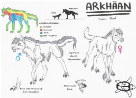 Arkhaan-Breed sheet by Aspi-Galou
