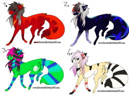 scene dog adopts by xSpickeyx