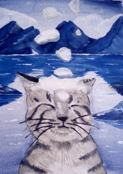 Snow with the cat by AirShade
