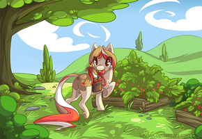 Strawberry Field by Keekoi