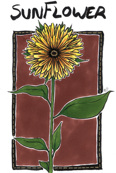 Sunflower by EmmieSensei