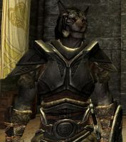 Wolfger Khajiit Armor Profile by Wolfgerlion