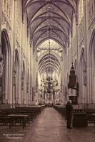 Sint Jan's Cathedral by nomad666