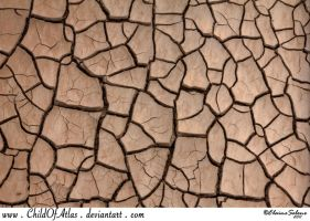 Cracked Dirt Texture - 1 by ElaineSeleneStock