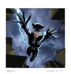 Catwoman Upperdeck Vs. Card by mikemayhew